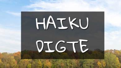 Photo of Haiku Digte