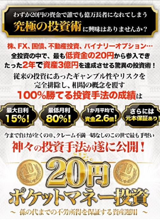 20円ポケットマネー投資