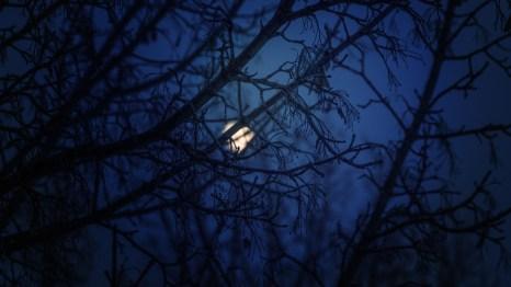 nighttime-moon