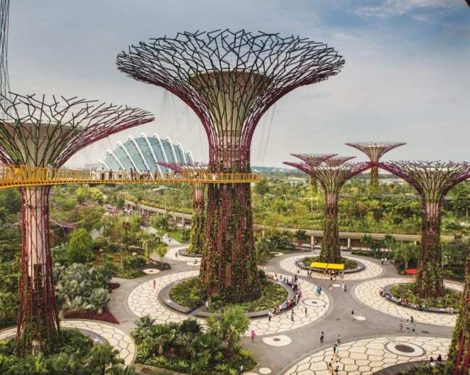 Symbol of Singapore and its efforts to promote green space, these �Supertrees