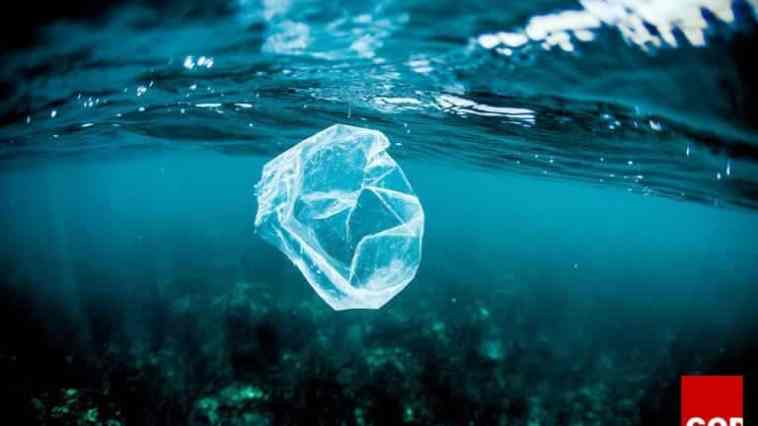 This is just the tiniest snapshot of our problem with plastics. Every year an estimated eight million tonnes of the material flow into the oceans.
