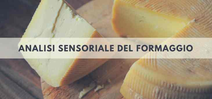L'esame del gusto nell'analisi sensoriale del formaggio