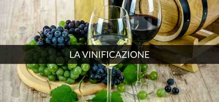 Come si fa il vino passito? Storia di una muffa nobile!