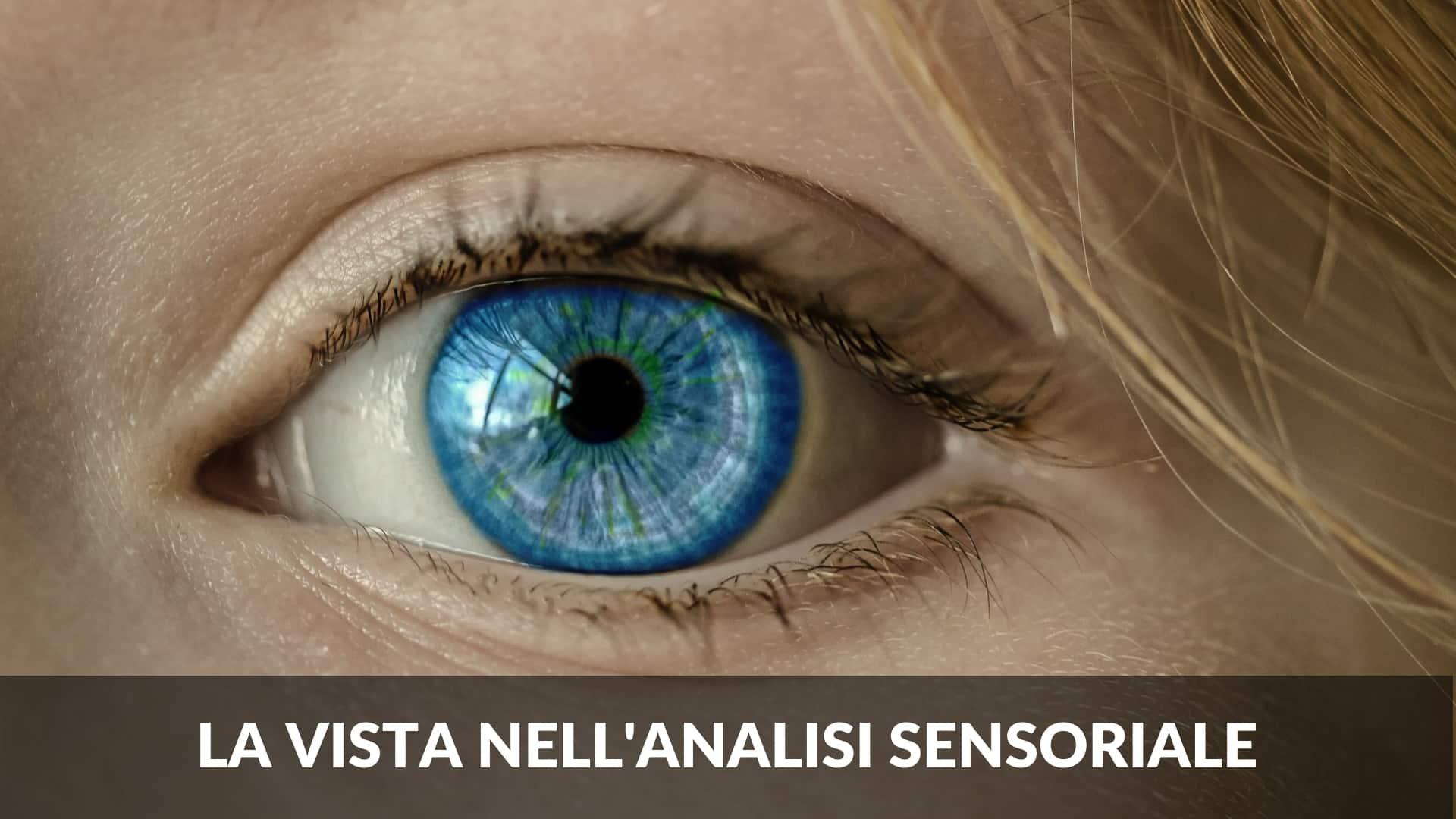 la vista nell'analisi sensoriale