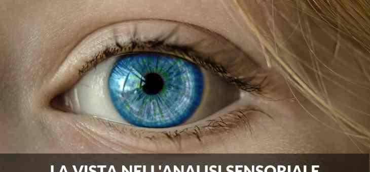 I cinque sensi: la vista nell'analisi sensoriale e i fotorecettori