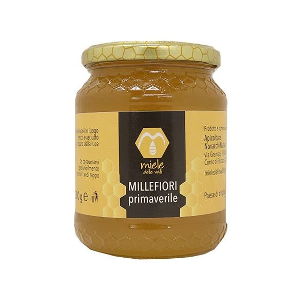 il miele millefiori primaverile 250gr - 500gr - 1000gr