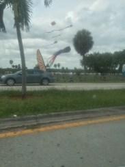 Kite flying as we departed
