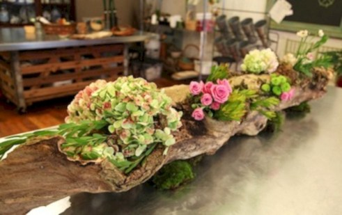 Ideas to arrange your succulent with driftwood 31