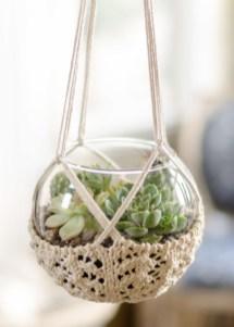 Amazing ways to planting terrarium 01