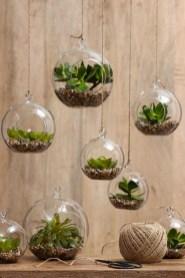Amazing ways to planting terrarium 10