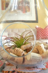 Amazing ways to planting terrarium 13