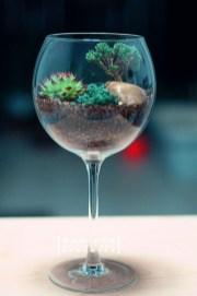 Amazing ways to planting terrarium 26