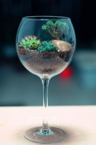 Amazing ways to planting terrarium 26