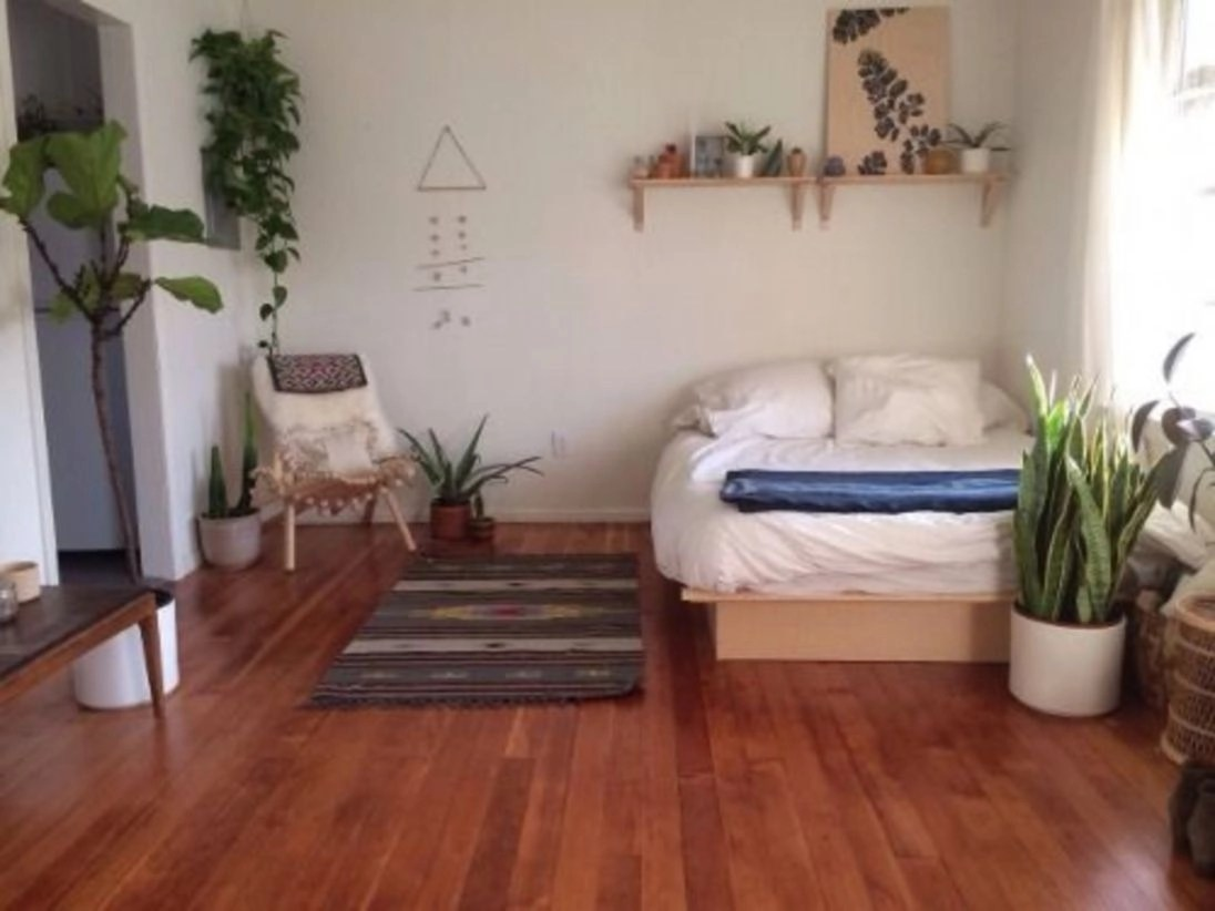 Bedroom plants minimal for apartement
