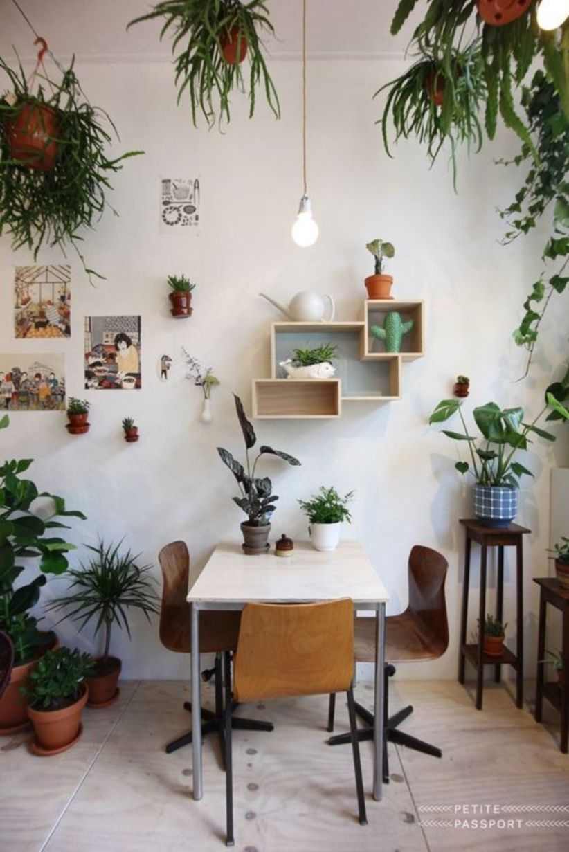 Clean and modern apartment space with indoor plants