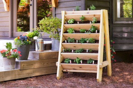 Creative ways to grow strawberry at your garden 06