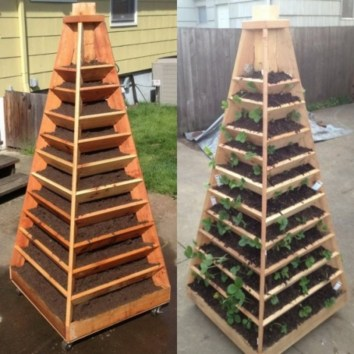Creative ways to grow strawberry at your garden 19