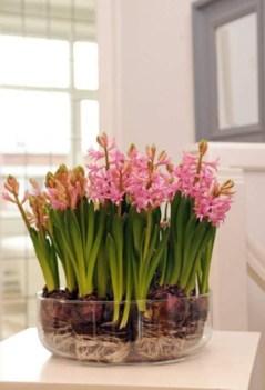 Diy indoor container water garden ideas 24