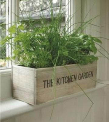 Diy indoor container water garden ideas 25