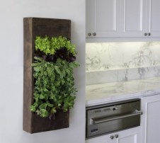 Diy indoor hanging planters 16