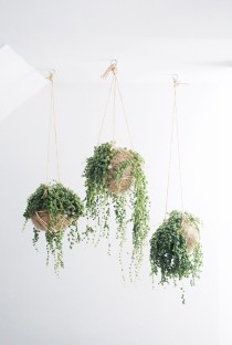 Diy indoor hanging planters 33