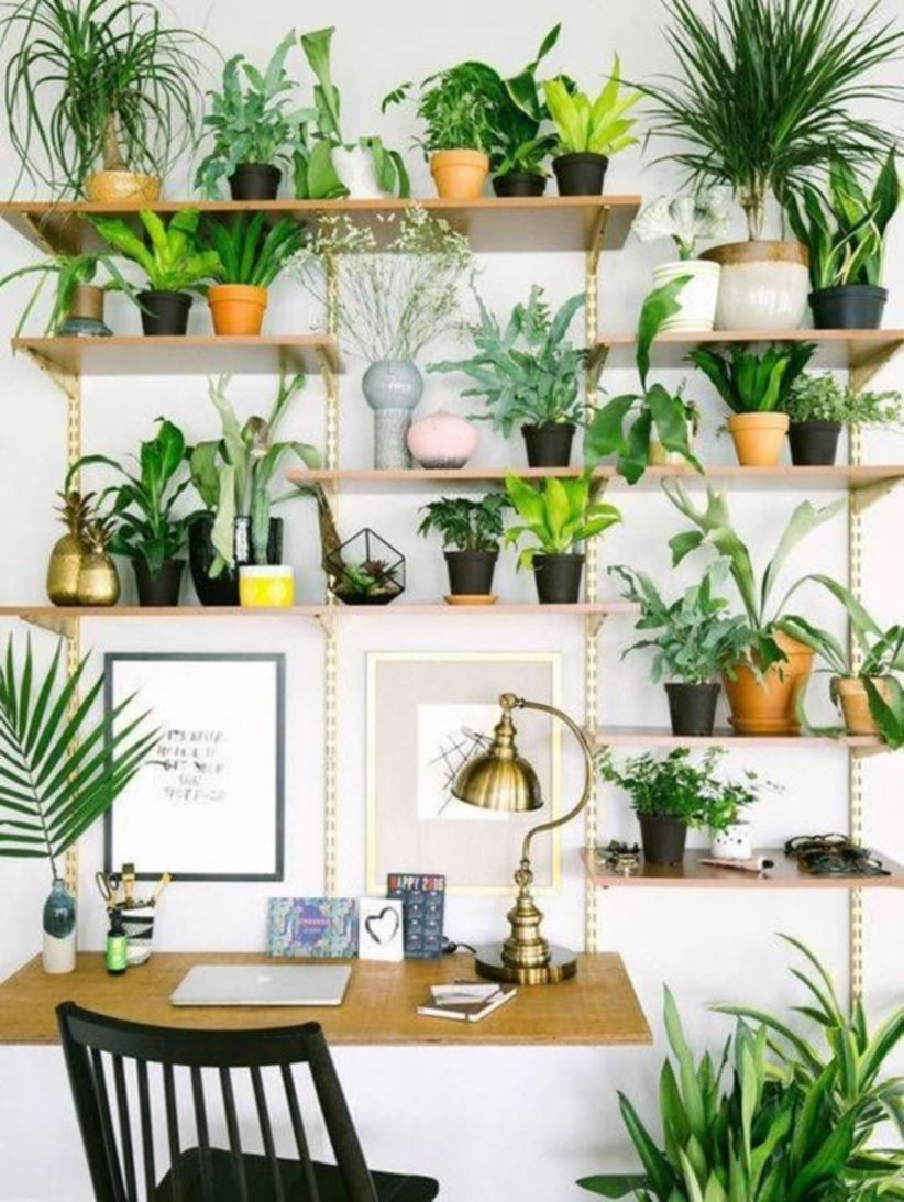 Small space home office ideas with plants decoration