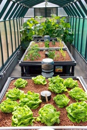 Diy hydroponic gardens for your small house 06