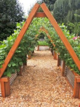 Diy hydroponic gardens for your small house 09