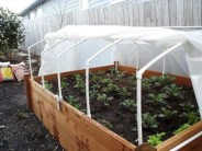Diy hydroponic gardens for your small house 11