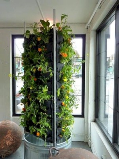 Diy hydroponic gardens for your small house 28