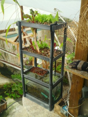 Diy hydroponic gardens for your small house 39