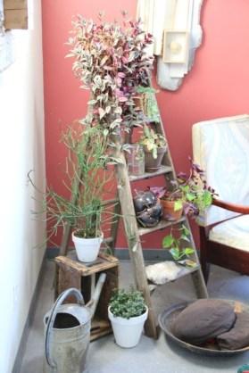 Gorgeous diy ladder-style herb garden 18