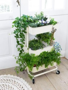Great indoor herb garden ideas for healthy life 08