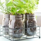 Great indoor herb garden ideas for healthy life 29