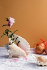 Creative ways to decorate your space with shells 07