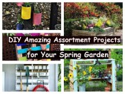 Diy azaming assortment projects