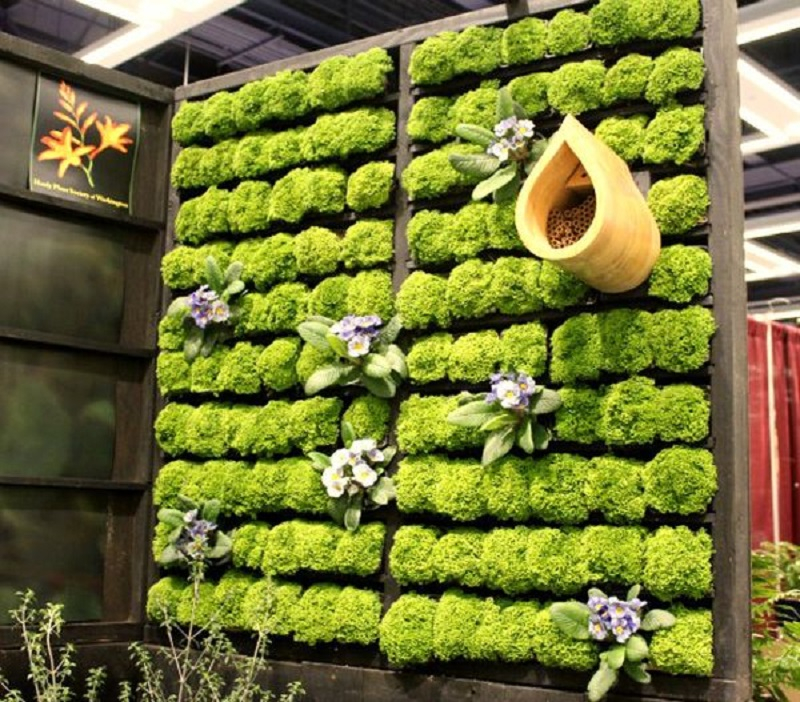 Wooden pallet grand living wall