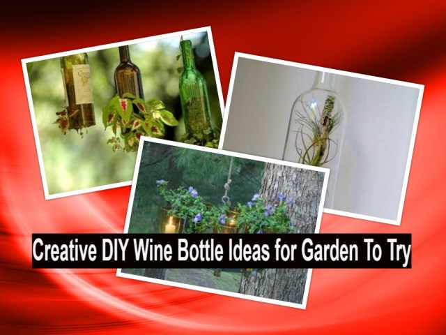 Creative diy wine bottle ideas for garden to try(1)