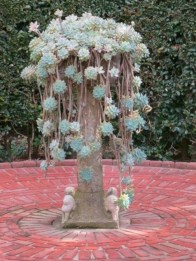 Beautiful and incredible fall succulent ideas 50