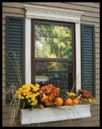 Cheap and easy fall window boxes ideas 16