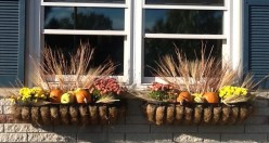 Cheap and easy fall window boxes ideas 20