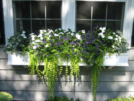 Cheap and easy fall window boxes ideas 28