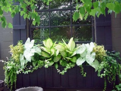 Cheap and easy fall window boxes ideas 45