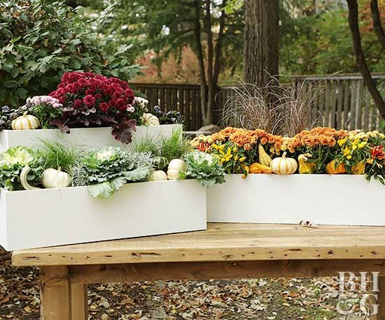 Cheap and easy fall window boxes ideas 49
