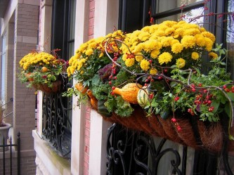 Cheap and easy fall window boxes ideas 52