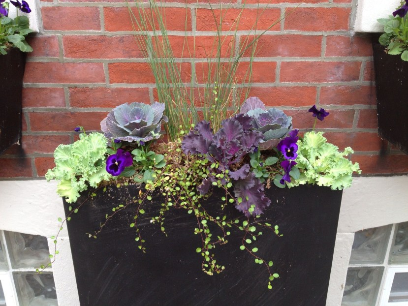 Cheap and easy fall window boxes ideas 60