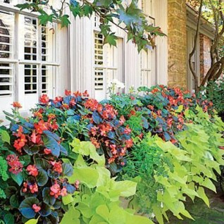 Cheap and easy fall window boxes ideas 61