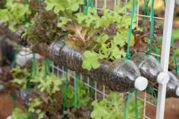 Creative ideas for a better backyard 15