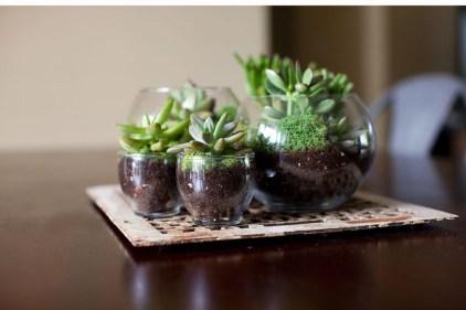 Simple ideas for adorable terrariums 11