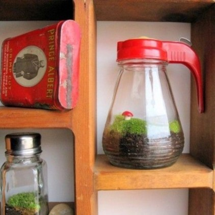 Simple ideas for adorable terrariums 13